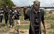 قتل 7 مدنيين على يد بوكو حرام