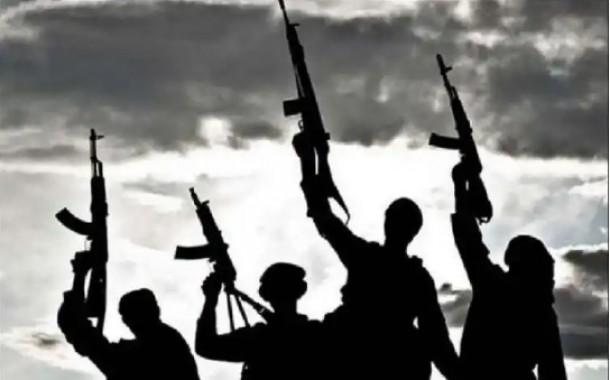 إنهم إرهابيون