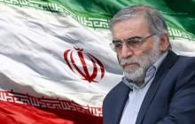 بيان جمعية للدفاع عن ضحايا الإرهاب استنكاراً لاغتيال الدكتور محسن فخري زاده